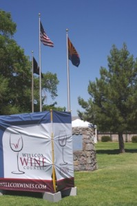 Flag and Festival Sign Picture
