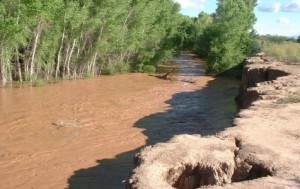 San Pedro River Flooding Picture