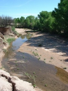San Pedro River Picture