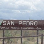 San Pedro House birding area sign