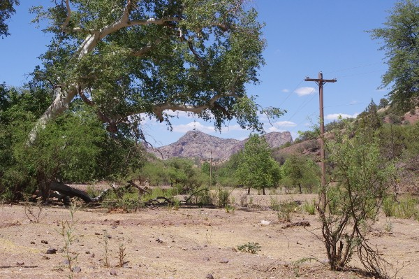Southeast Arizona Ghost Town Picture